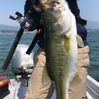 【BIWAKO】dpBATTLE2019 5月のラージマウスバス釣果