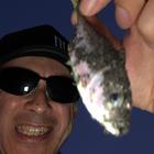 【DUO】TETRAWORKS アジングビンゴ 8月のアジ釣果