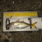 【DUO】TETRAWORKS アジングビンゴ 8月の釣果