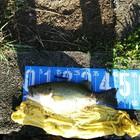 【BIWAKO】dpBATTLE2019 9月の釣果