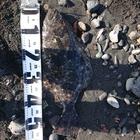 【イシグロ】フラットフィッシュダービー2019 秋のヒラメ釣果