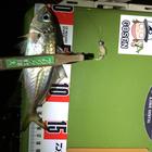 【DUO】TETRAWORKS アジングビンゴ 12月のアジ釣果