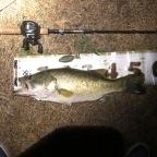 2018 dpBATTLE【琵琶湖】8月の釣果