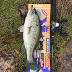 2018 dpBATTLE【琵琶湖】5月の釣果