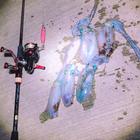 ken.fishingの釣果