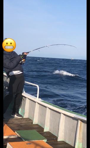 ビンチョウマグロの釣果
