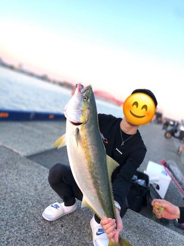 神戸港(兵庫)