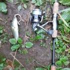 釣り友同好会の釣果
