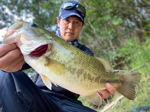 香川県野池群