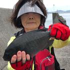チヌ釣り師の釣果