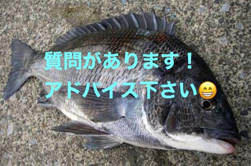 遠賀川河口