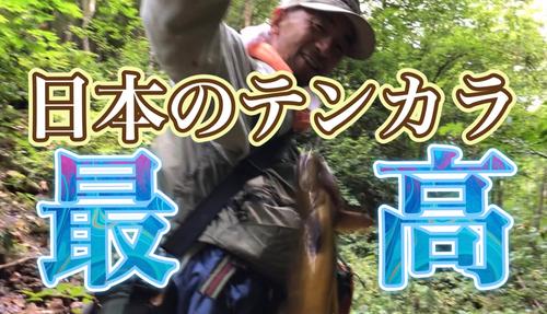 ヤマトイワナの釣果