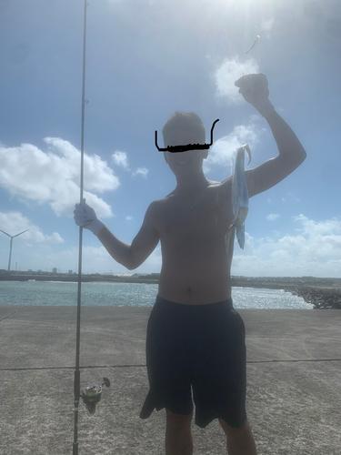 鹿島灘漁港