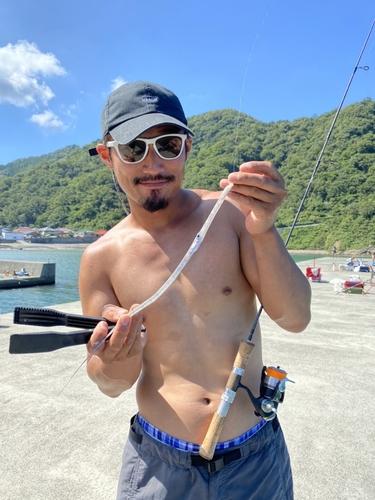 アオヤガラの釣果