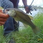 釣りに行こう♪の釣果