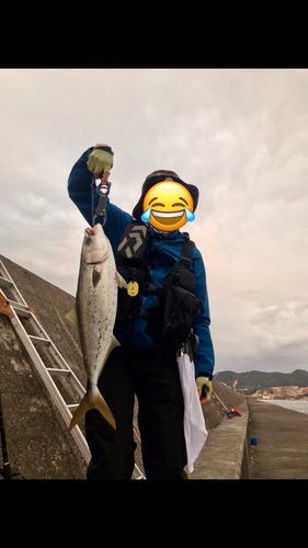 メジロの釣果