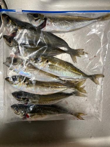 神崎漁港(大分)
