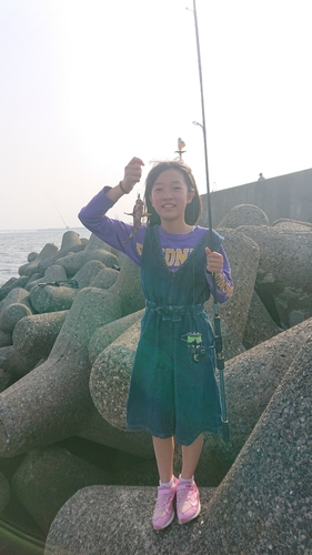 大阪海上釣り堀サザン