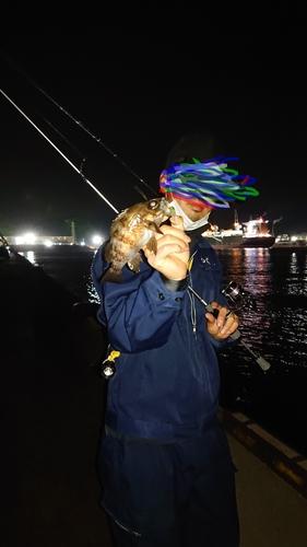 キンメバルの釣果