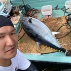 洋釣の釣果