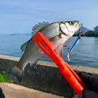 kubohiroの釣果