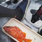 魚紳の釣果