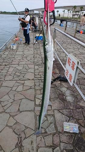 新居海釣公園