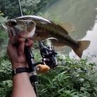 セコ釣り氏2回目❗の釣果