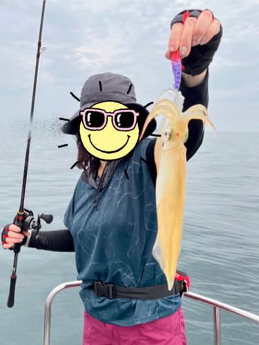 ヤリイカの釣果