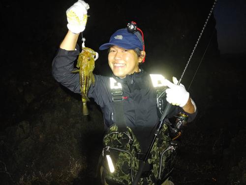 シマゾイの釣果