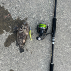 釣り付きな高校生の釣果