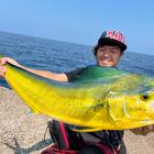 津軽海釣の釣果