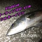 ❤️釣り好きチコちゃん❤️ダイエット中の釣果