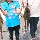 💞魚 娘💞の釣り日記の釣果
