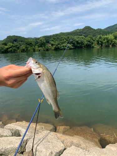 由良川河口(京都)