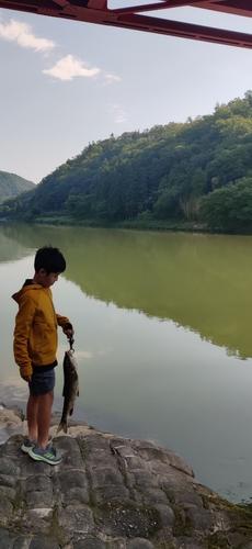 矢作川上流