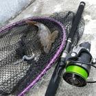魚屋一鮮の釣果