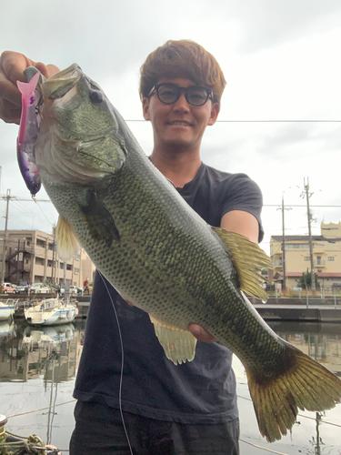 長浜港(琵琶湖)
