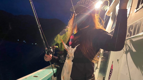 マルイカの釣果