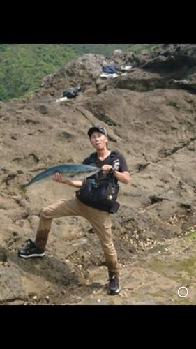 ブリの釣果