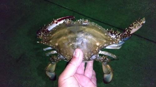 塩釜港魚市場前