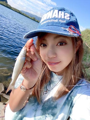 チカの釣果