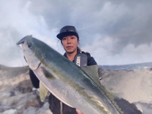 ワラサの釣果