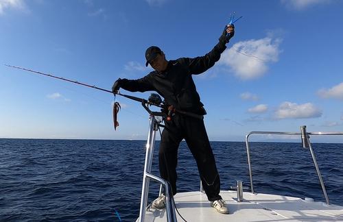 マイカの釣果