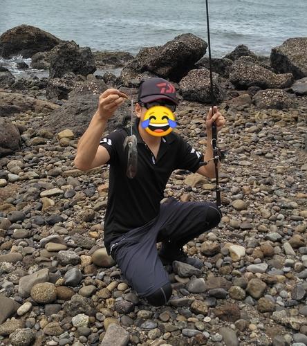 モイカの釣果