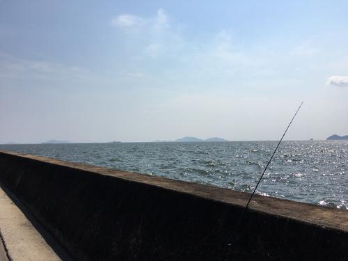 芦田川河口