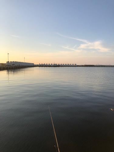 波崎新漁港