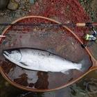 trout_takaの釣果