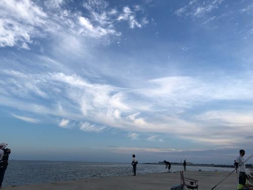 伊勢湾湾奥