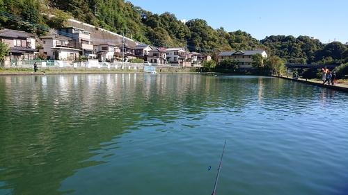 桂川フライルアー釣場